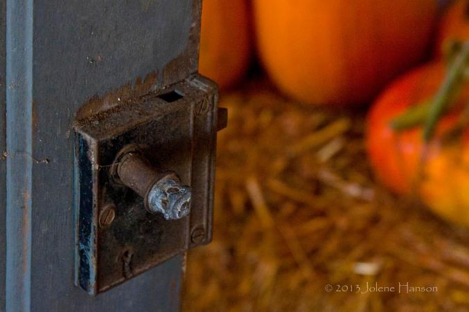 Door_Pumpkins2