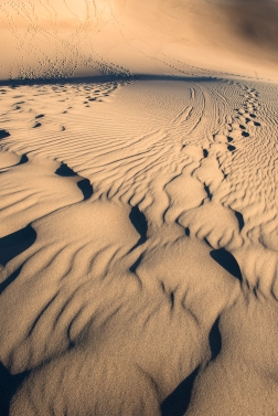 Down the Dunes