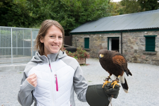 Carole and Harris Hawk