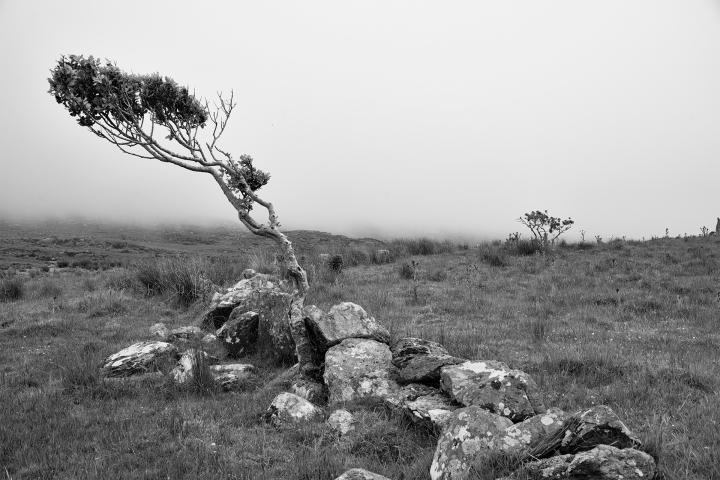 Hills of Ardgroom