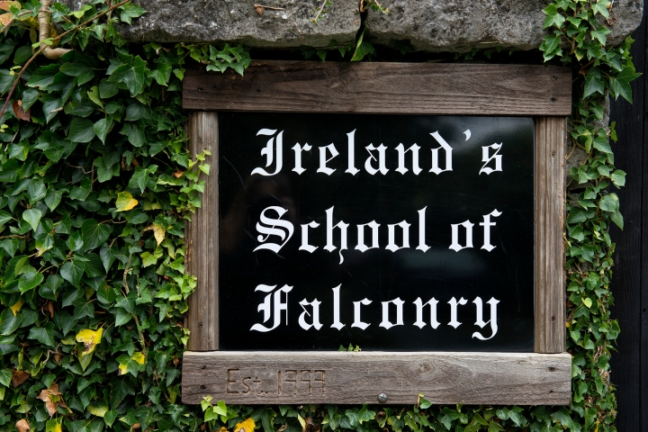 School of Falconry sign
