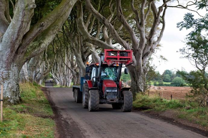 Dark Hedges Tractor